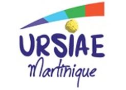 L'union régionale des Structures d'Insertion par l'Activité Economique de Martinique